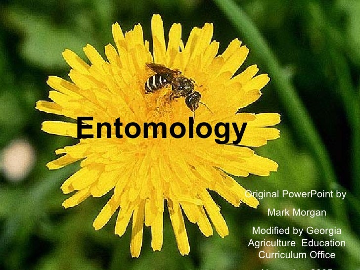 Entomology          Original PowerPoint by              Mark Morgan           Modified by Georgia          Agriculture Edu...