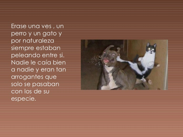 Fábula Del Perro Y El Gato