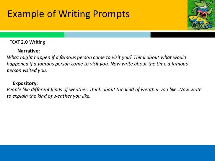 One Day Essay: Essay fcat FREE Formatting!