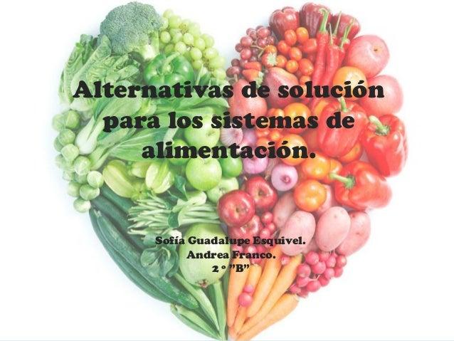 """Alternativas de solución para los sistemas de alimentación. Sofía Guadalupe Esquivel. Andrea Franco. 2 º """"B"""""""