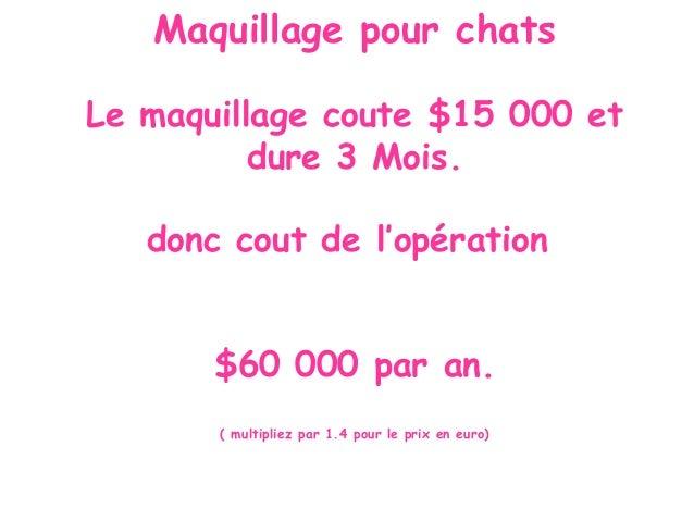 Maquillage pour chats Le maquillage coute $15 000 et dure 3 Mois. donc cout de l'opération $60 000 par an. ( multipliez pa...
