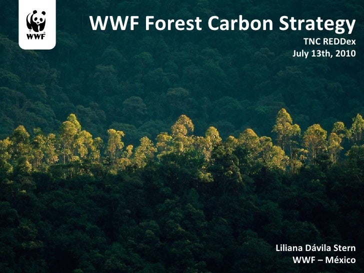 WWF Forest Carbon Strategy TNC REDDex July 13th, 2010 Liliana Dávila Stern WWF – México