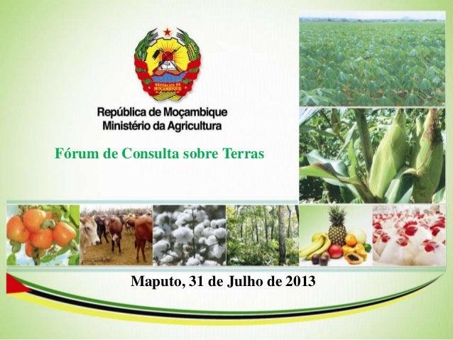 Fórum de Consulta sobre Terras Maputo, 31 de Julho de 2013