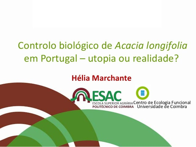 Controlo biológico de Acacia longifolia em Portugal – utopia ou realidade? Hélia Marchante Centro de Ecologia Funcional Un...