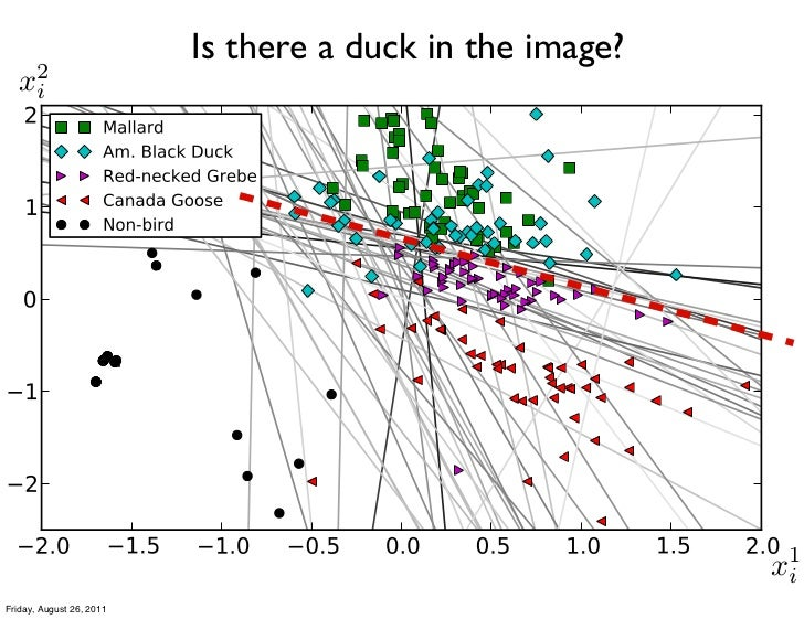 Is there a duck in the image?   2  xi                                                           1                         ...