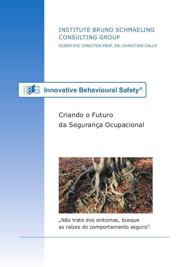 "Institute Bruno Schmaeling Consulting Group SCIENTIFIC DIRECTOR PROF. DR. CHRISTIAN CALLO Innovative Behavioural Safety® ""..."