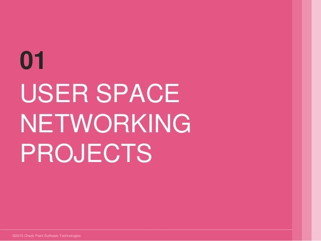 ©2015 Check Point Software Technologies Ltd. USER SPACE NETWORKING PROJECTS 01