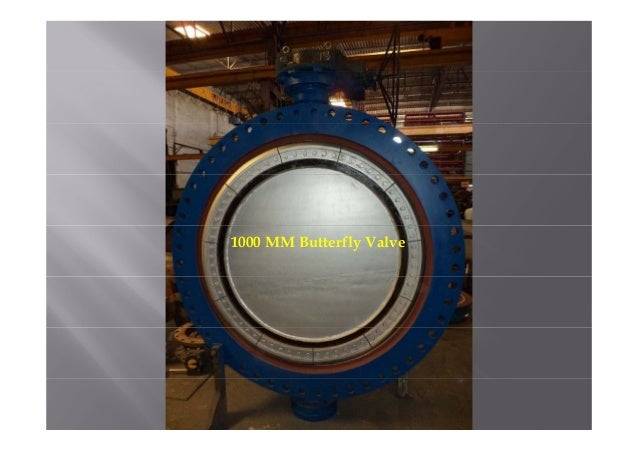 Large diameter butterfly valves for water treatment