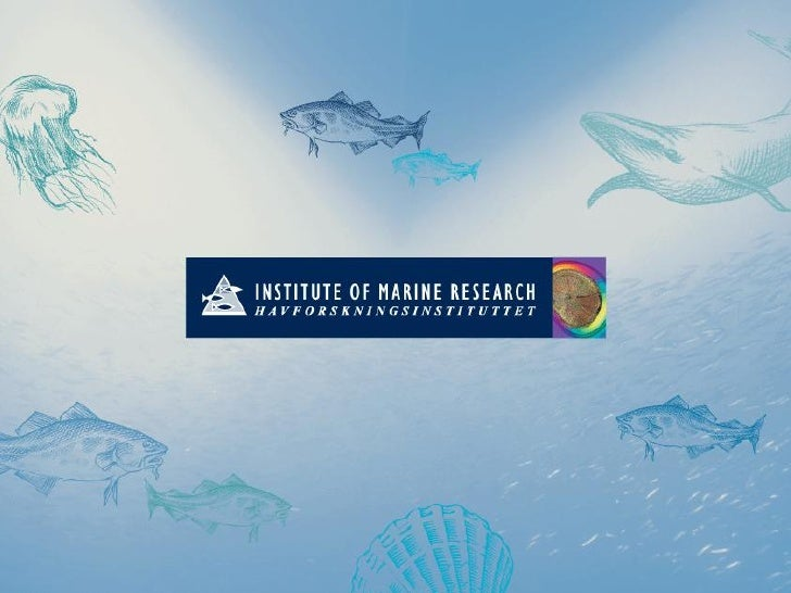 The Ecosystem Approach to      Fisheries Management An overview of interpretations of the concept   & suggestions for how ...