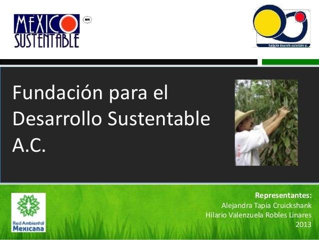 Fundación para el Desarrollo Sustentable A.C. Representantes: Alejandra Tapia Cruickshank Hilario Valenzuela Robles Linare...
