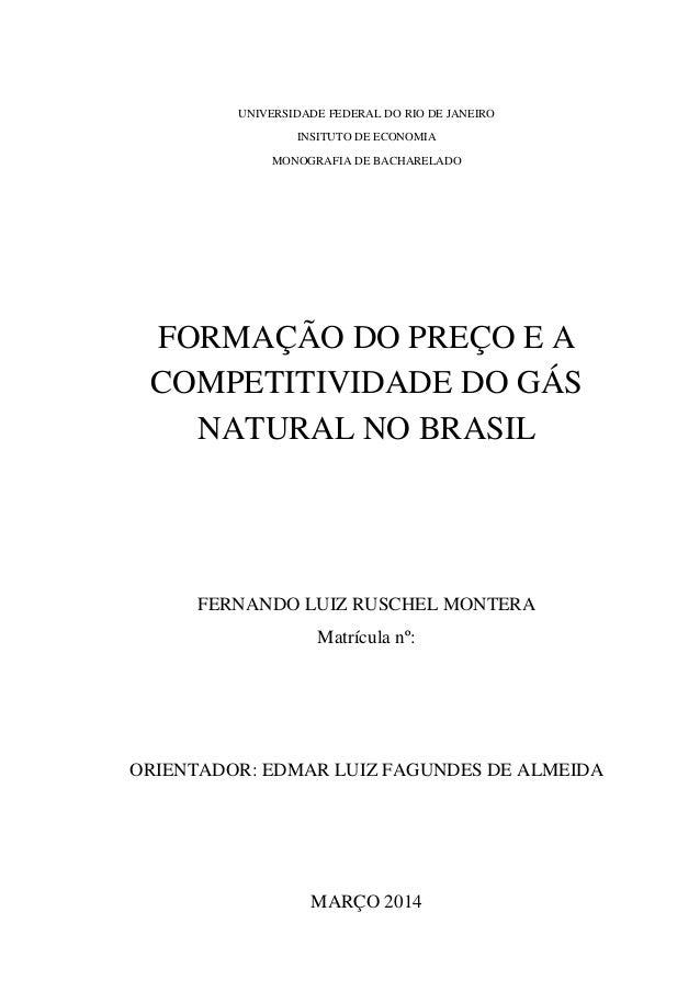 UNIVERSIDADE FEDERAL DO RIO DE JANEIRO INSITUTO DE ECONOMIA MONOGRAFIA DE BACHARELADO FORMAÇÃO DO PREÇO E A COMPETITIVIDAD...