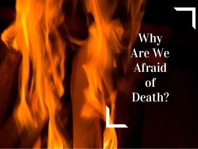 Why are we afraid of death
