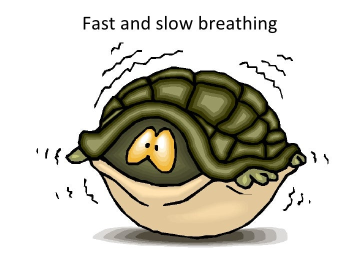 Fast and slow breathing