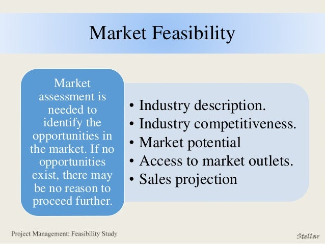 how to write feasibility study of a business