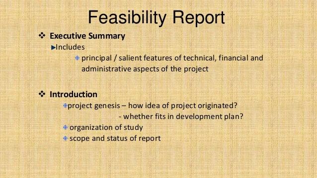 feasibility report - Yolar.cinetonic.co