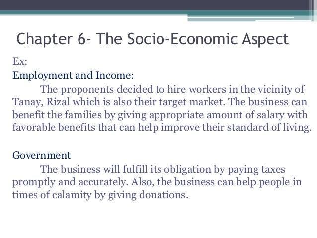 socio economic characteristics business