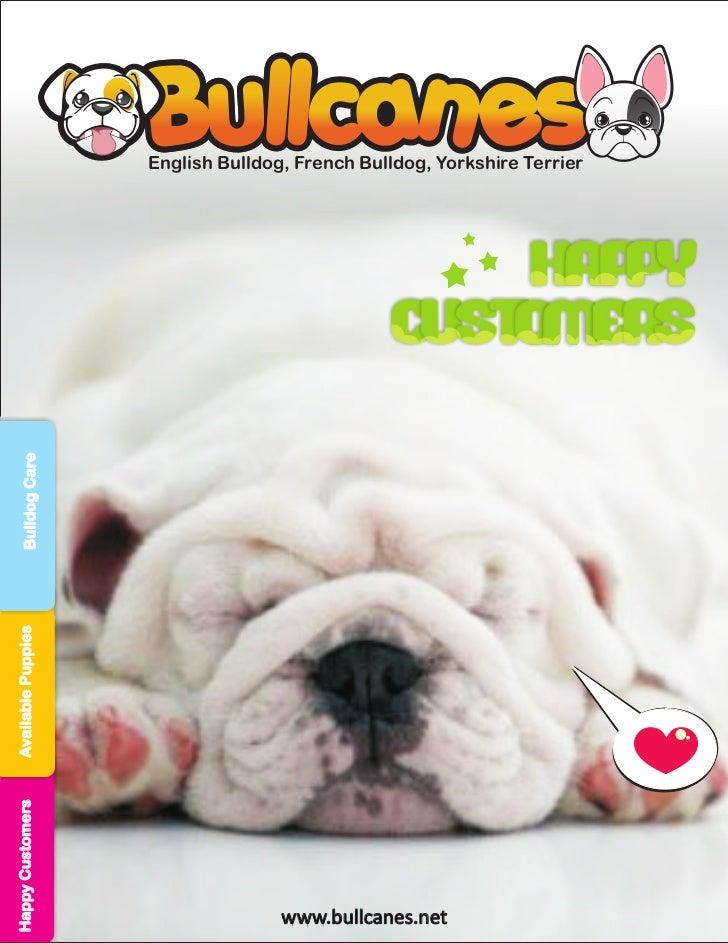 English Bulldog, French Bulldog, Yorkshire Terrier                                                   Hap y                ...