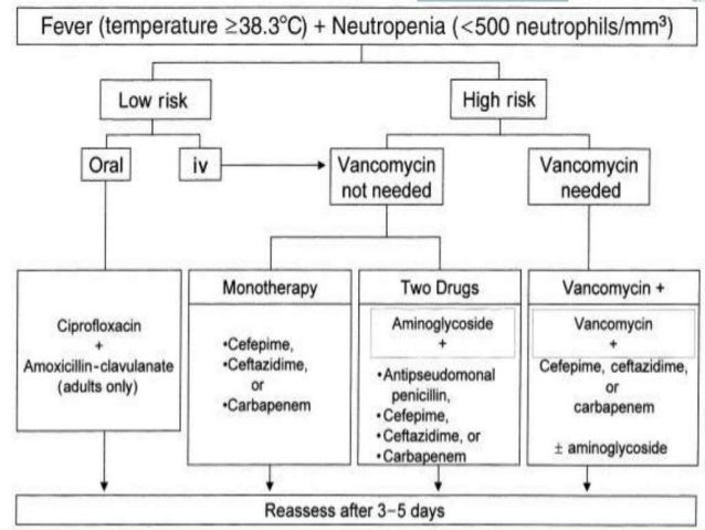 Febrile Neutropenia Approach And Treatment