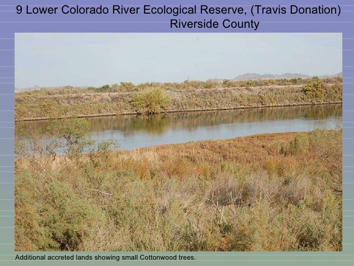 9 Lower Colorado River Ecological Reserve, (Travis Donation)  Riverside County Additional accreted lands showing small Cot...