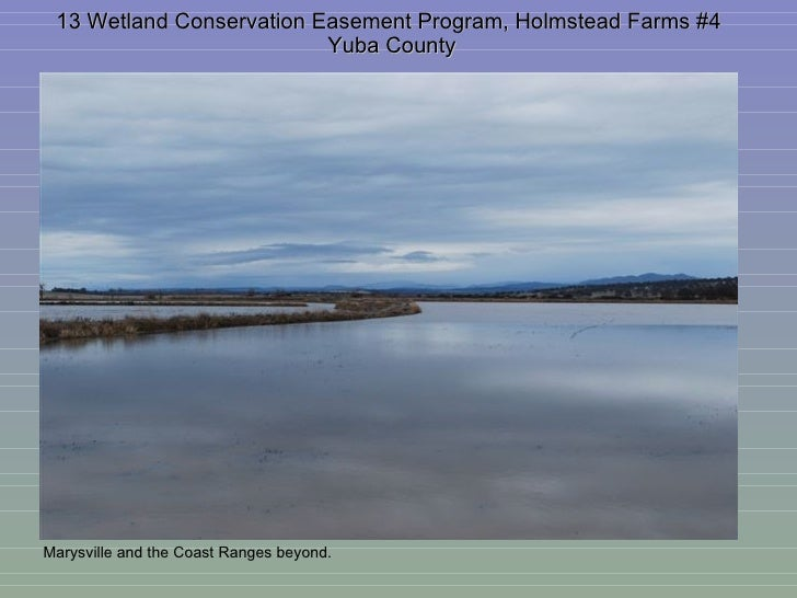 13 Wetland Conservation Easement Program, Holmstead Farms #4  Yuba County Marysville and the Coast Ranges beyond.