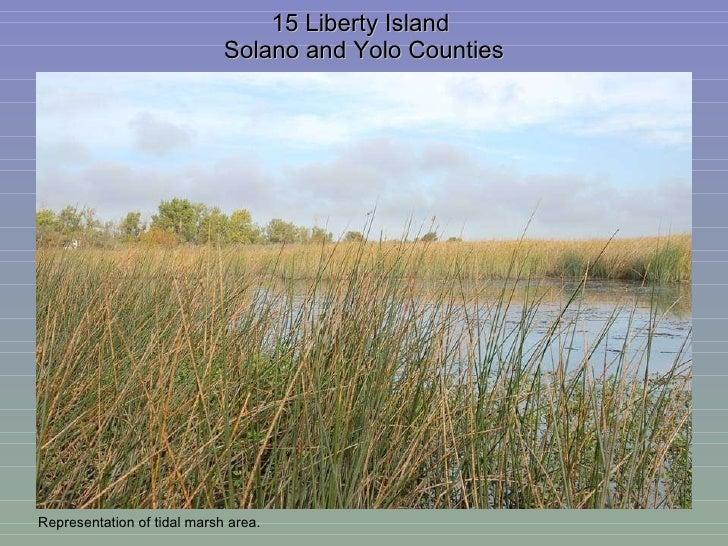 15 Liberty Island  Solano and Yolo Counties Representation of tidal marsh area.