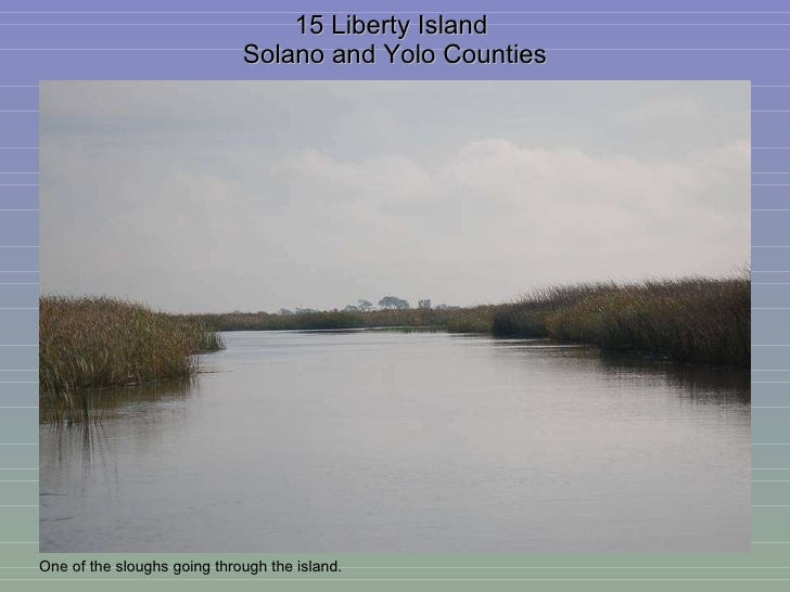 15 Liberty Island  Solano and Yolo Counties One of the sloughs going through the island.