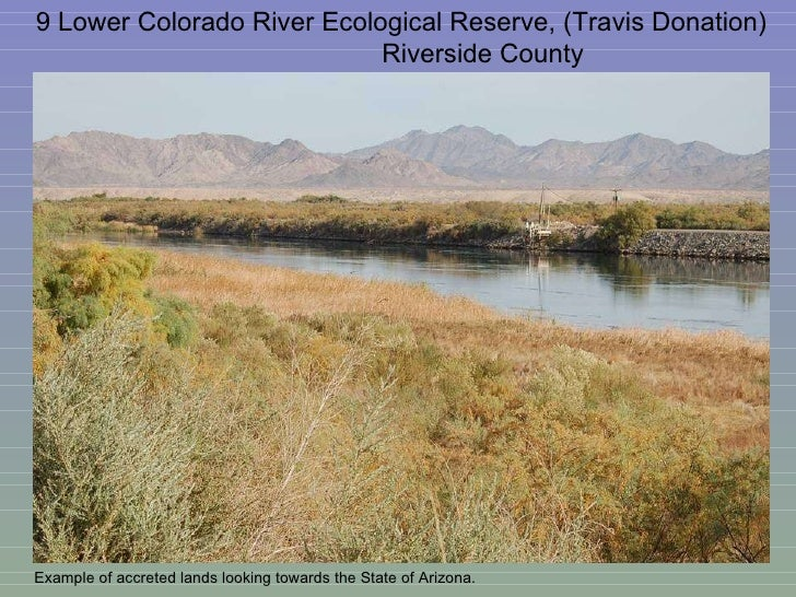 9 Lower Colorado River Ecological Reserve, (Travis Donation)  Riverside County Example of accreted lands looking towards t...