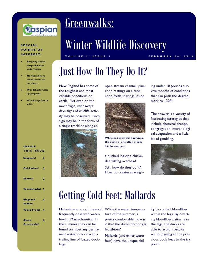 Greenwalks: SPECIAL POINTS OF INTEREST:                            Winter Wildlife Discovery                            V ...
