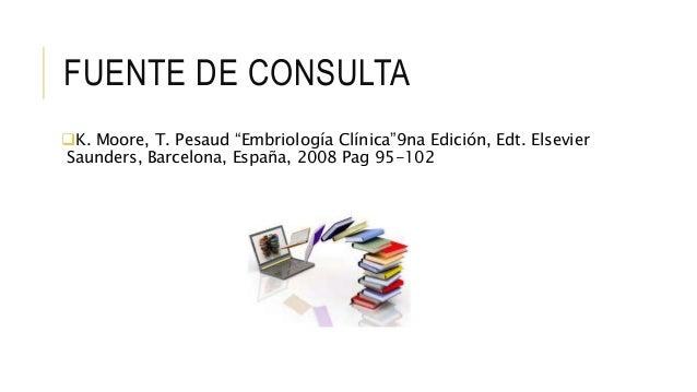 """FUENTE DE CONSULTA K. Moore, T. Pesaud """"Embriología Clínica""""9na Edición, Edt. Elsevier Saunders, Barcelona, España, 2008 ..."""