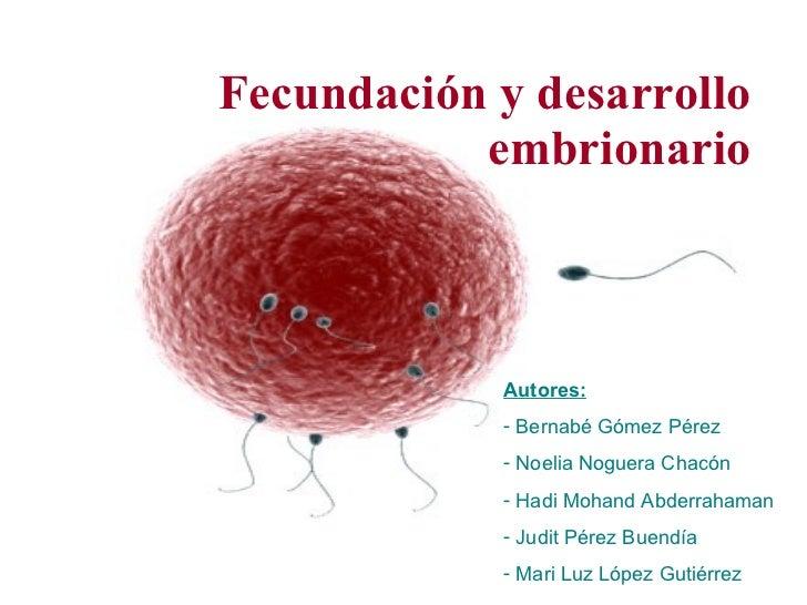Fecundación y desarrollo embrionario <ul><li>Autores: </li></ul><ul><li>Bernabé Gómez Pérez </li></ul><ul><li>Noelia Nogue...