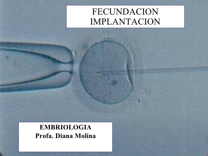 FECUNDACION IMPLANTACION EMBRIOLOGIA Profa. Diana Molina