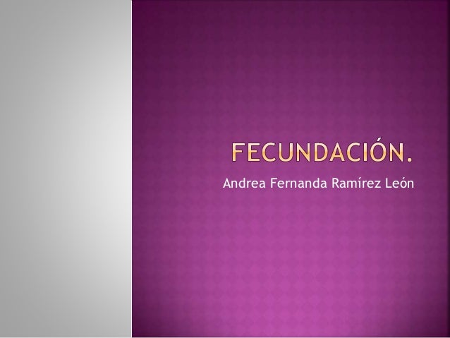 Andrea Fernanda Ramírez León