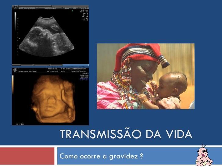 TRANSMISSÃO DA VIDA Como ocorre a gravidez ?