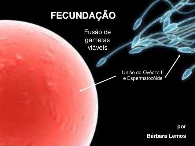 FECUNDAÇÃO Fusão de gametas viáveis União do Ovócito II e Espermatozóide por Bárbara Lemos