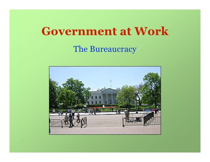 Government at Work     The Bureaucracy