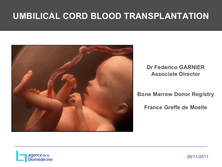 UMBILICAL CORD BLOOD TRANSPLANTATION Dr Federico GARNIER Associate Director Bone Marrow Donor Registry France Greffe de Mo...