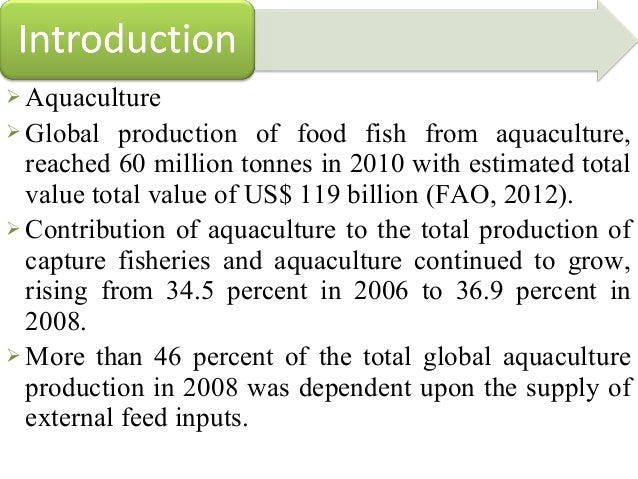 Conventional protein sources for aqua feed for Feed and grow fish free no download