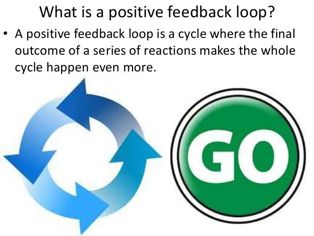 feedback loops essay Free negative feedback papers, essays, and research papers.