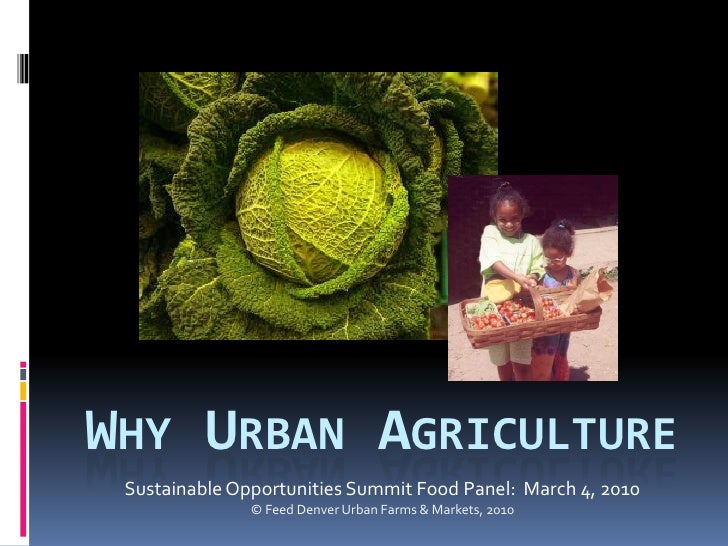 WHY URBAN AGRICULTURE  Sustainable Opportunities Summit Food Panel: March 4, 2010                © Feed Denver Urban Farms...