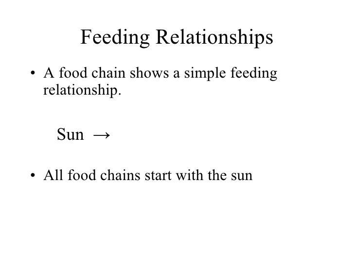 Feeding Relationships <ul><li>A food chain shows a simple feeding relationship. </li></ul><ul><li>Sun  -> </li></ul><ul><l...
