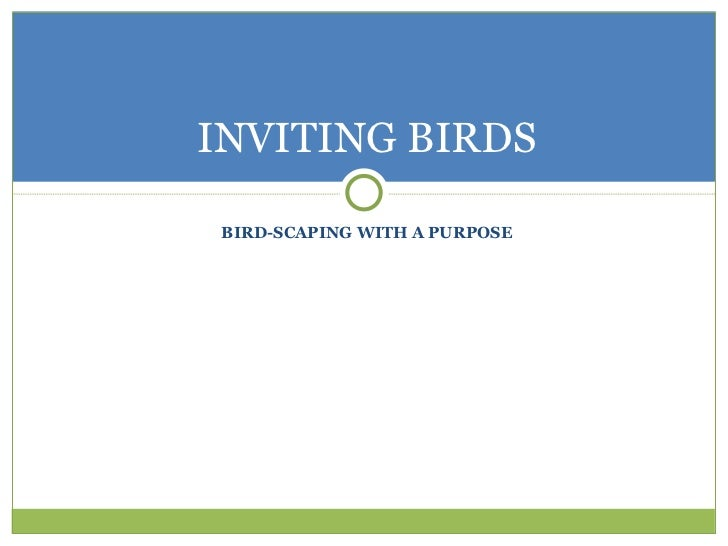 INVITING BIRDS BIRD-SCAPING WITH A PURPOSE