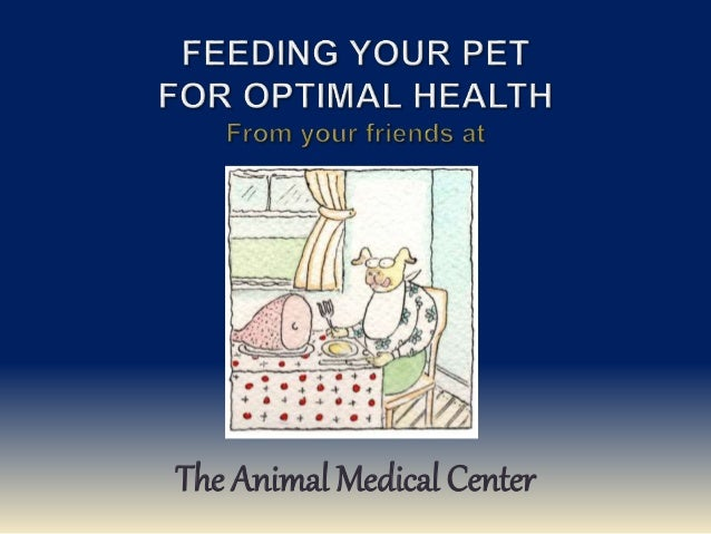 The Animal Medical Center