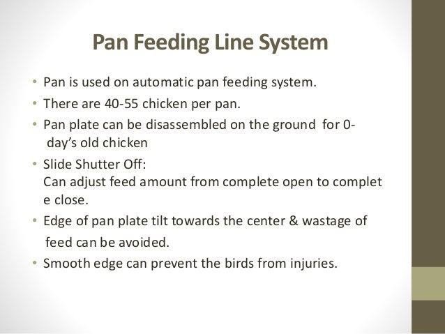 Feeding system of poultry (2)