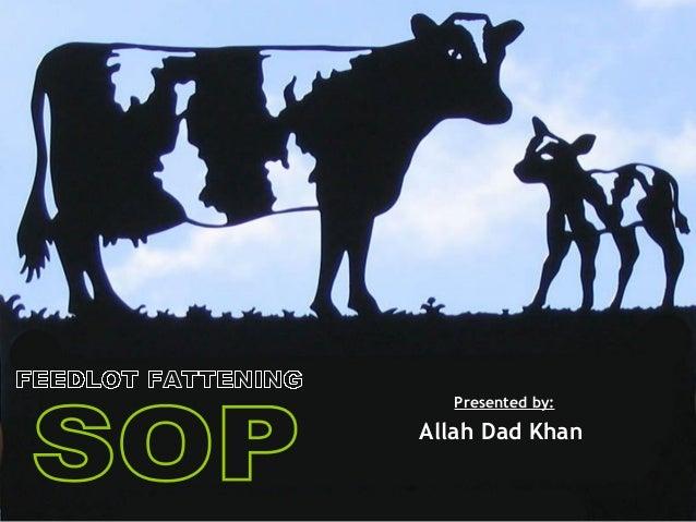 Presented by: Allah Dad Khan