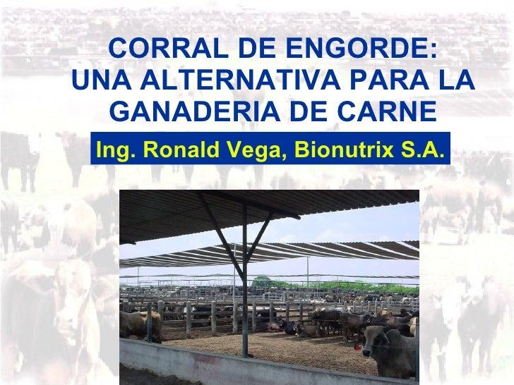 CORRAL DE ENGORDE: UNA ALTERNATIVA PARA LA GANADERIA DE CARNE Ing. Ronald Vega, Bionutrix S.A.