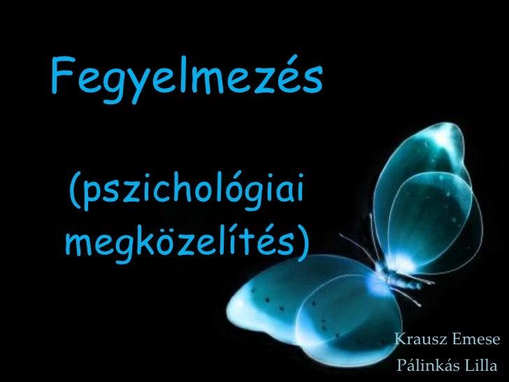 Fegyelmezés (pszichológiai megközelítés) Krausz Emese Pálinkás Lilla