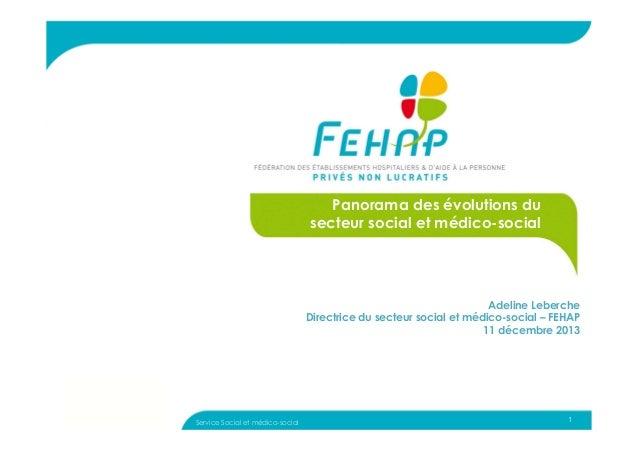 1 Panorama des évolutions du secteur social et médico-social Adeline Leberche Directrice du secteur social et médico-socia...
