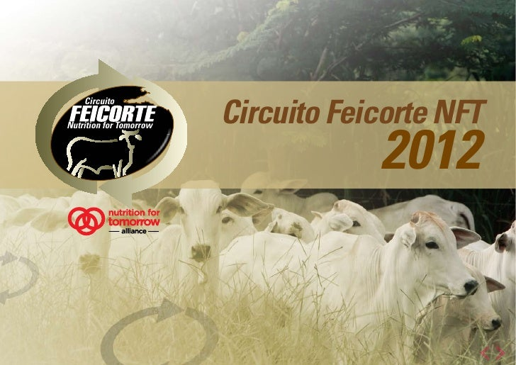 Circuito Feicorte NFT             Circuito                                             2012Nutrition for Tomorrow  shaping...