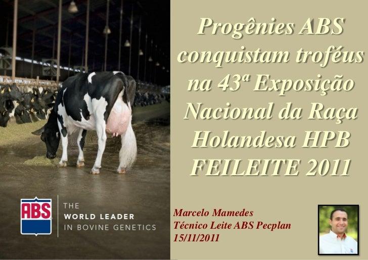 Progênies ABSconquistam troféus na 43ª Exposição Nacional da Raça Holandesa HPB FEILEITE 2011Marcelo MamedesTécnico Leite ...