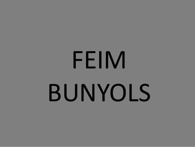 FEIM BUNYOLS